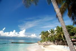 Auberge de la Vieille Tour **** – Guadeloupe